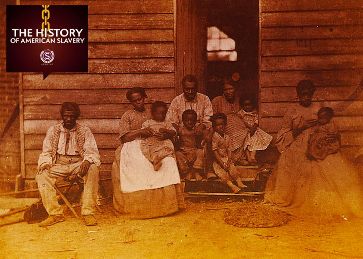 How enslaved women s sexual health was contested in the antebellum