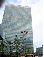 Betty Prior's view of the United Nations