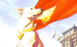 This is Krypto the Super Dog. He is awesome. These are facts.