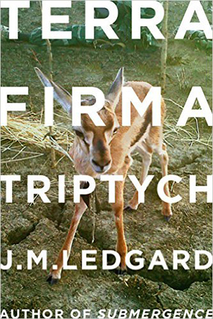 151125_BOOKS_Overlooked-terra-firma-triptych