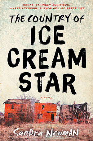 151125_BOOKS_Overlooked-the-country-of-ice-cream-star