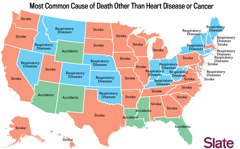 Death Map The Most Mon Causes Of In Each State Union