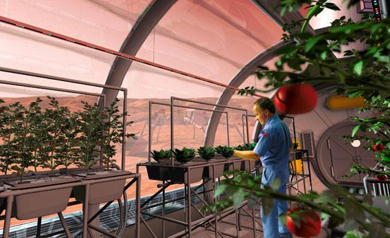As seen in this artist's rendering, astronauts exploring Mars will build hydroponic growth labs where vegetables can be grown.