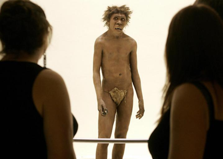 Neanderthal and Denisovan genetics: Human ancestors interbred with extinct species.