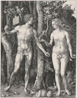 A print by Albrecht Durer titled Adam and Eve (The Fall of Man).