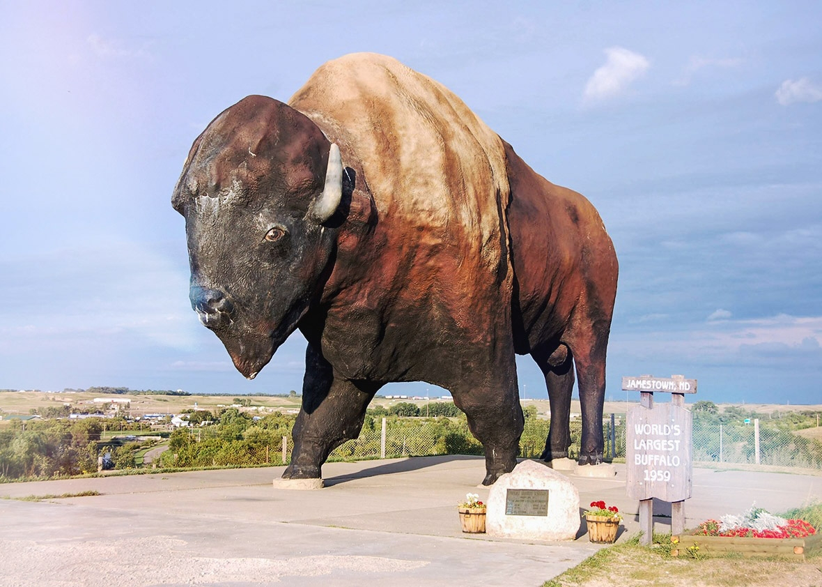 150810_TRAVEL_WorldsLargestBuffalo