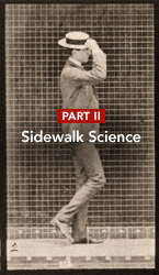 Sidewalk ScienceWhat's Your Walking Score
