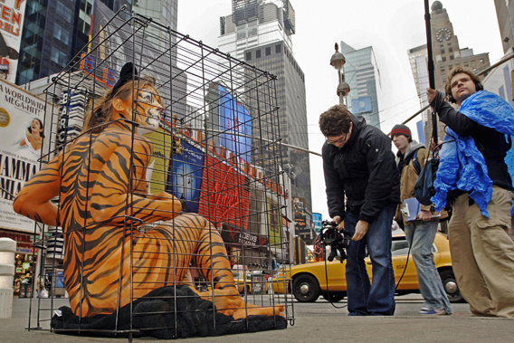 Amy Jannette, her nearly-nude body painted like a tiger, is videotaped as she sits in a cage March, 9 2006, in New York's Times Square as part of a PETA protest against the use of exotic animals by the Ringling Bros. and Barnum & Bailey Circus.