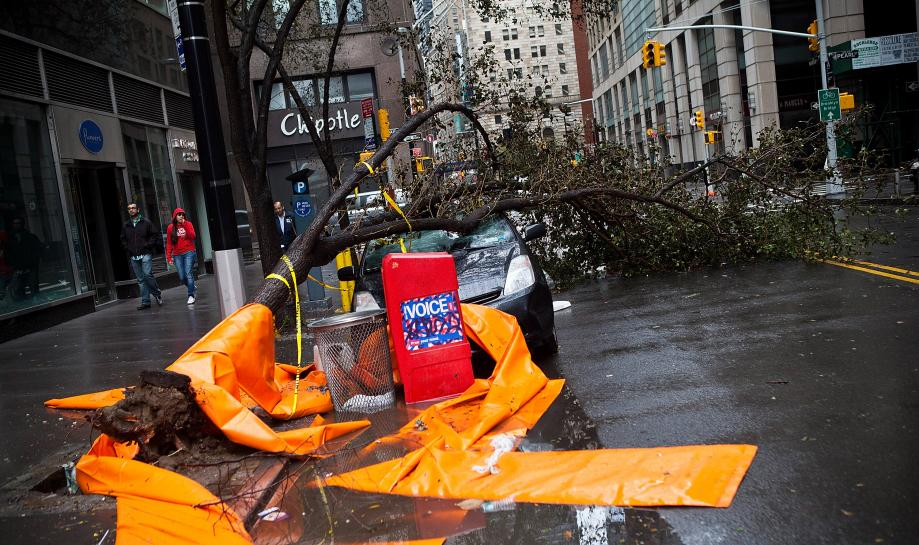 A car crushed by a tree following Hurricane Sandy on October 30, 2012 in the Financial District of New York.