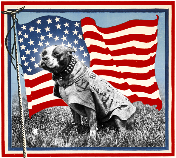 America Canada War America's Original Dog of War