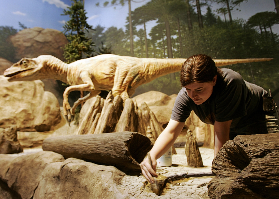The Creation Museum in Petersburg, Kentucky.