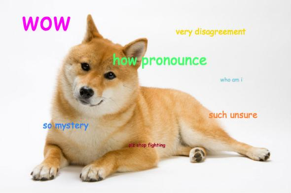 pronounce_doge4.CROP.promovar mediumlarge doge pronunciation how do you pronounce the name of the shibe