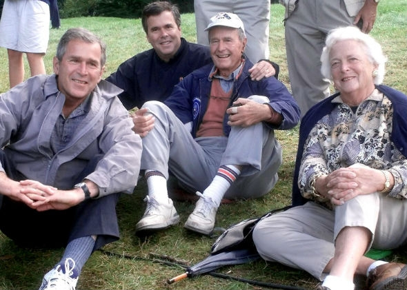 The Bushes.