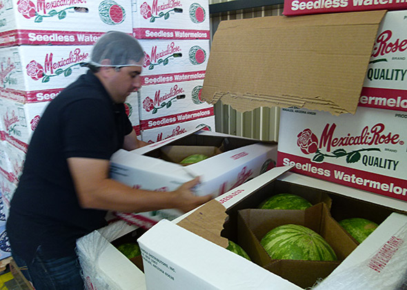 Omar Sanchez, a produce sales rep for Sandia Distributors, displays his wares in Nogales, Arizona.