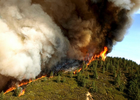 newspaper articles about california wildfires