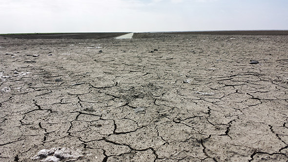 What remains of Tulare Lake, once the biggest freshwater lake west of the Mississippi.​