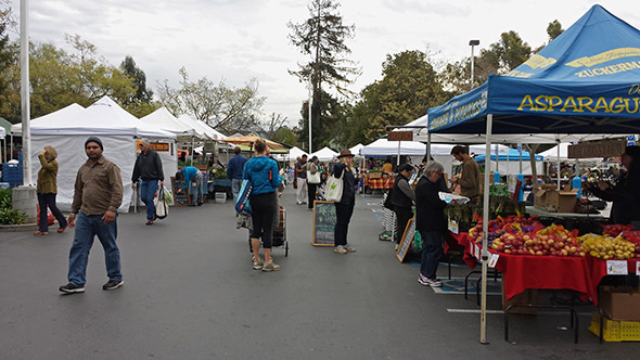 The Temescal Farmers Market in Oakland.