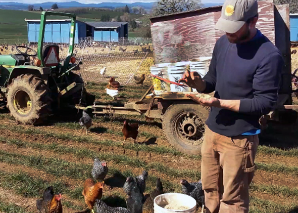 Joshua Simonson with his chickens.