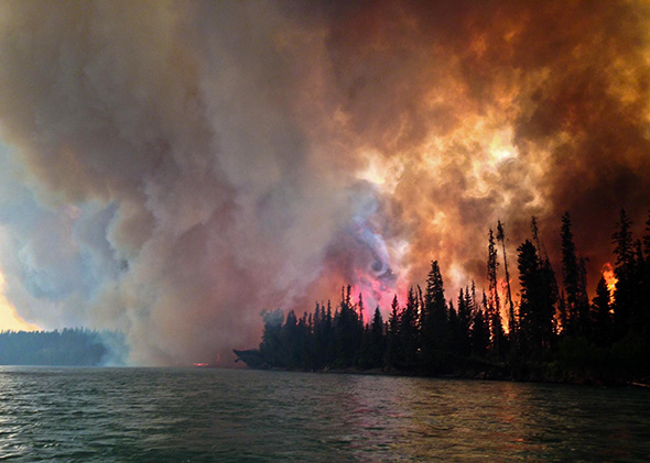 Fire in a Kenai-Kodiak Area forest