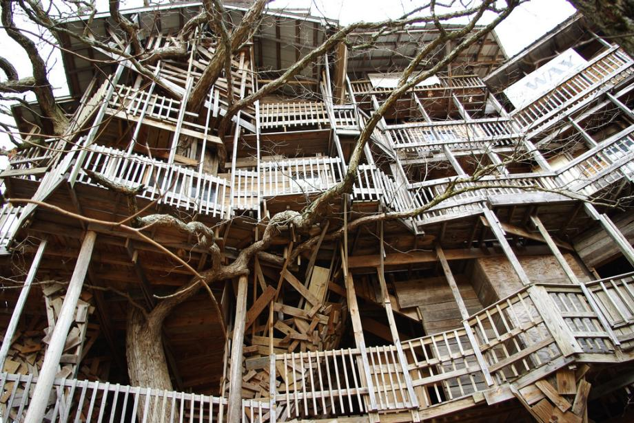 Biggest Treehouse In The World Inside world's largest treehouse, builtdivine inspiration in