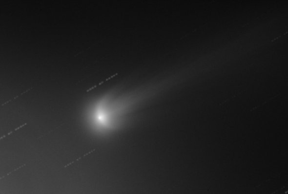 ISON and wings