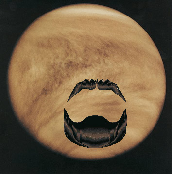 Venus with goatee