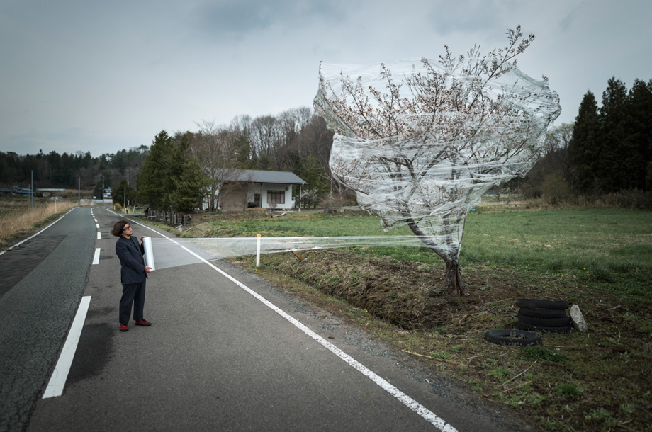 "The evacuated town of Iitate. The packed tree is a cherry blossom. This tree is the symbol of ephemeral beauty in Japan (it remains in bloom a few days only). During World War II, the ""Sakura"" was the symbol used to motivate Japanese people."