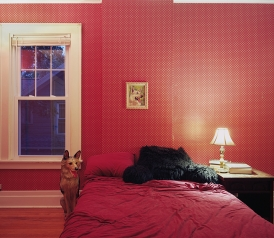 Untitled Interior (german shepherds), 2011