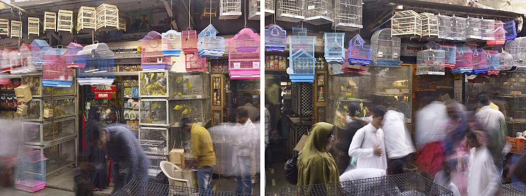 Bird Cages, Crawford Market, Mumbai, India - 2013