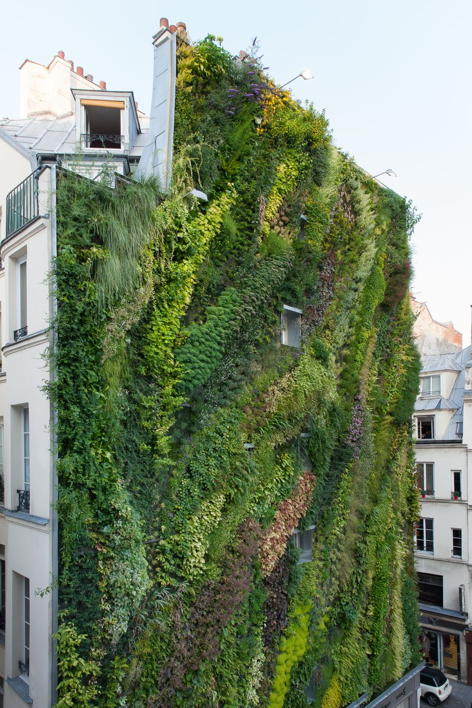Patrick Blancs Newest Vertical Garden Greening urban walls