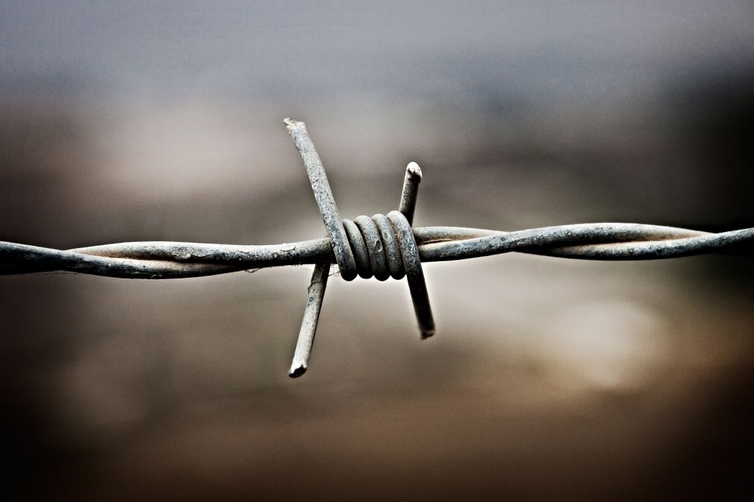 99% Invisible Roman Mars: The history of barbed wire.