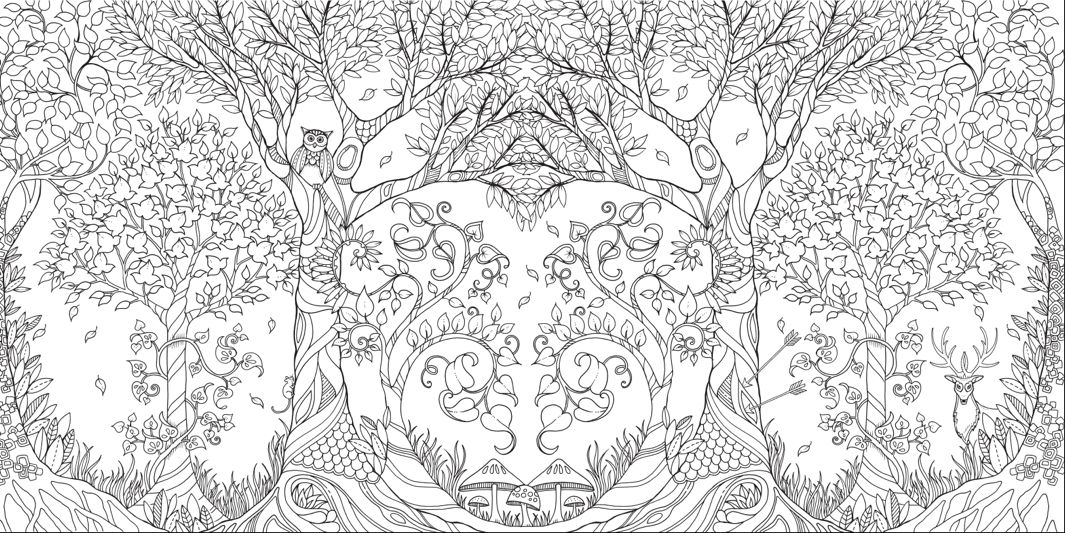 Johanna Basford Enchanted Forest Courtesy The Artist And Laurence King 3 Here Top A Page Spread From Basfords Adult Coloring Book