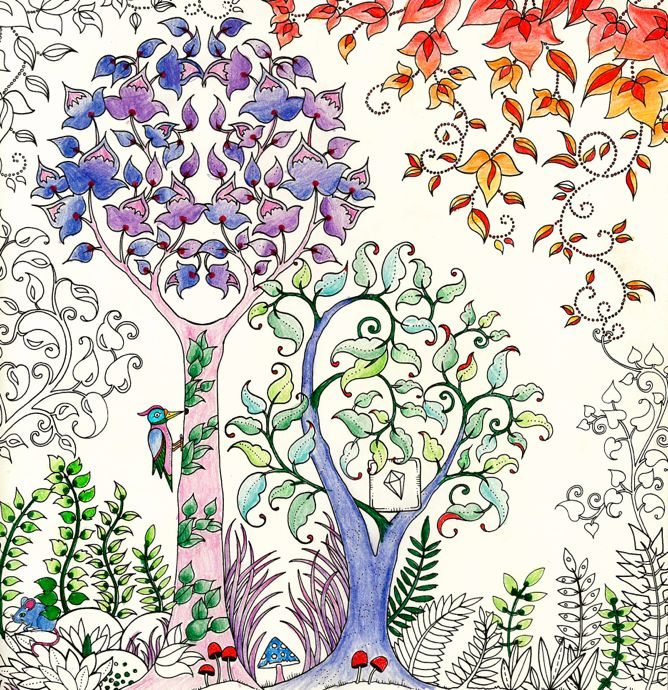 Johanna Basford Enchanted Forest, Secret Garden: Addictive Coloring Books  For Grown-ups.