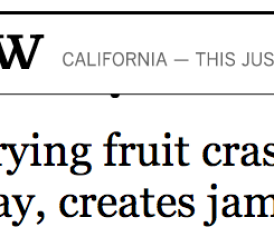 Your Headline of the Day