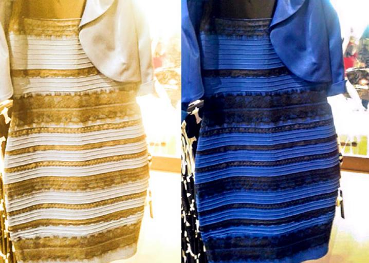 The great blue and black versus white and gold dress debate.