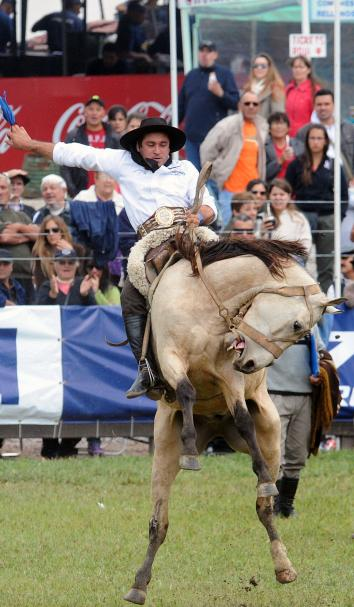 484640699-gaucho-rides-a-bucking-colt-during-the-traditional