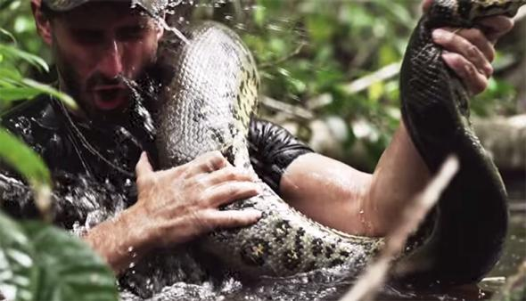... Channel: A Man Getting Eaten Alive by an Anaconda Isn't Educational