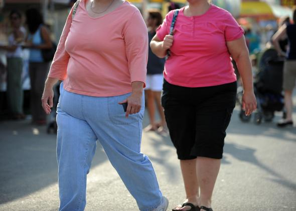 89980234-two-overweight-women-walk-at-the-61st-montgomery-county