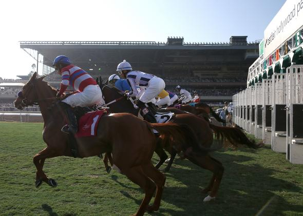 458911907-horses-leave-the-gate-at-the-start-of-the-third-race-at