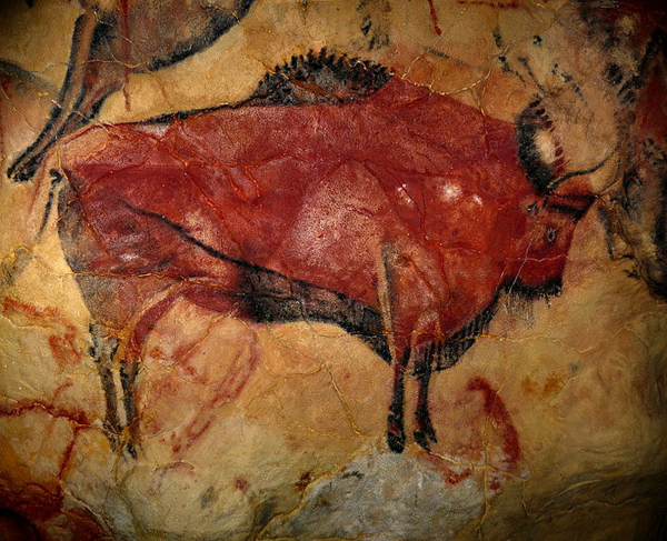 Author Argues That Even In Paleolithic >> Cave Paintings And The Human Brain How Neuroscience Helps Explain