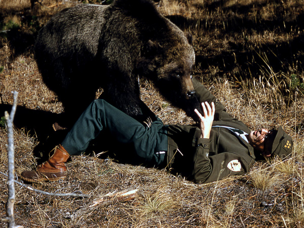 Grizzly Bear Eating Man