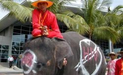 A protester and his elephant at the International AIDS Conference in Vienna.