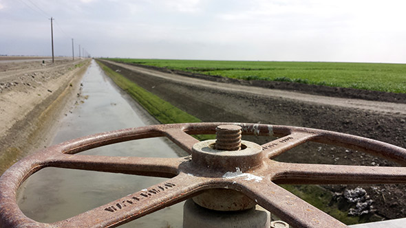 "In the Central Valley, the diversion canals are turned to the ""off"" position this year."