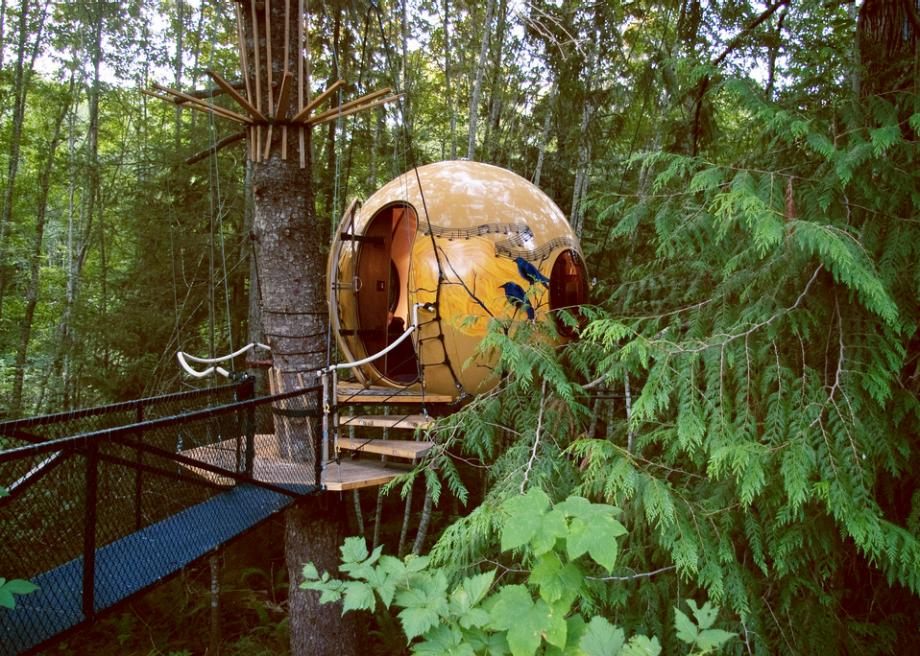 Float in a forest at Vancouver Island's Free Spirit Spheres