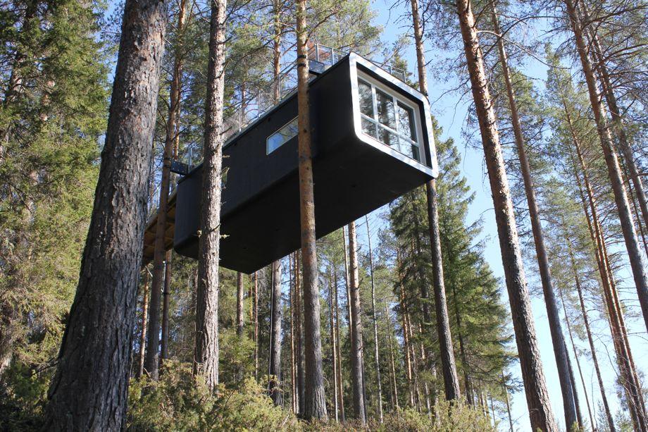 Image result for treehouse hotel sweden