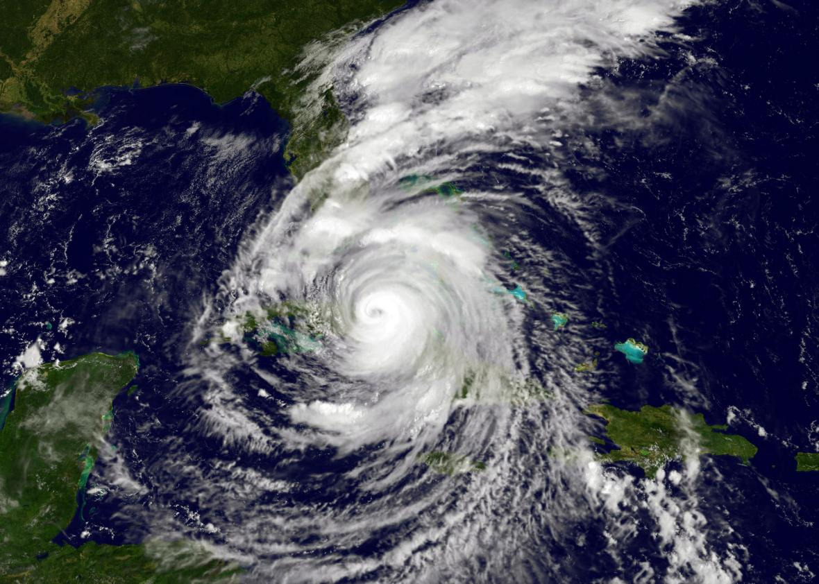 Image result for hurricane irma florida
